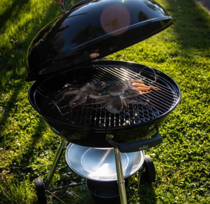 polpo-grigiato-barbecue-weber-manomano-cottura-7